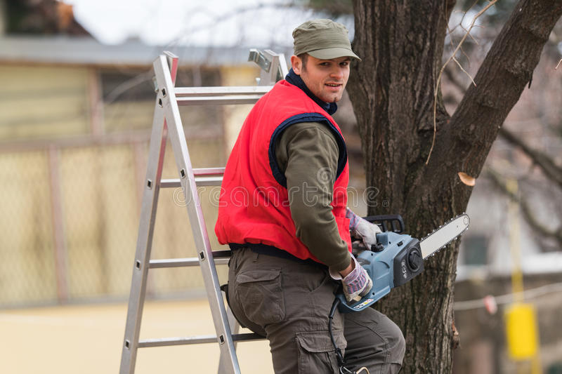 Man cutting a branch with chainsaw in the yard royalty free stock images