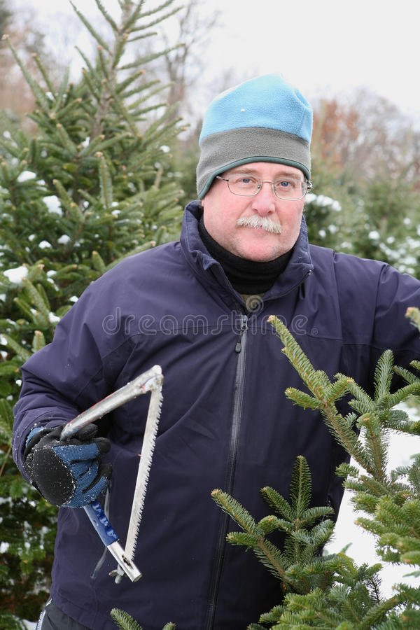 Man cutting a Christmas Tree stock photos
