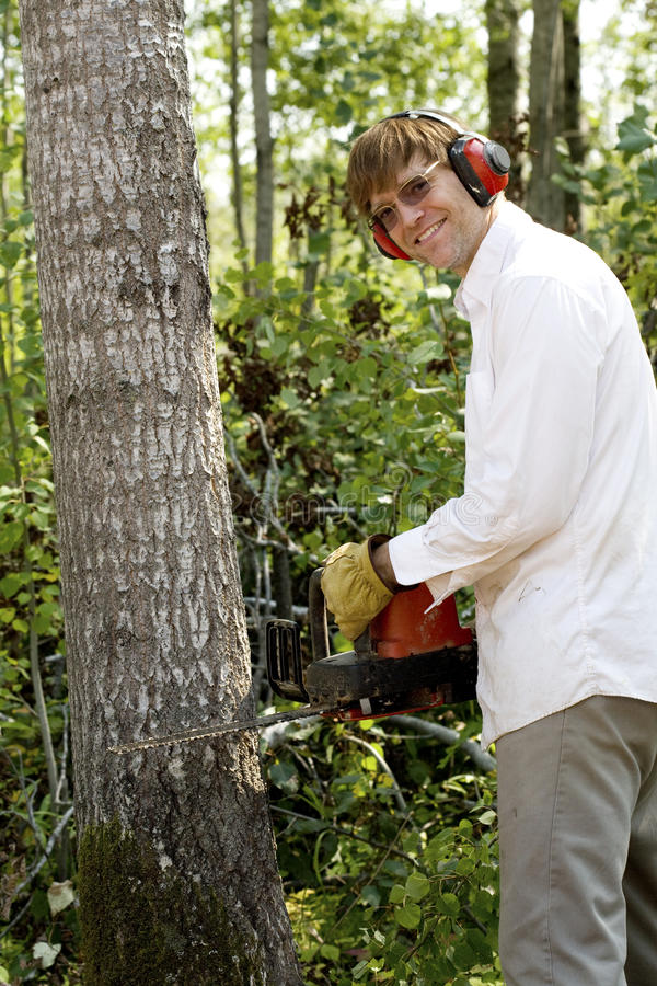 Man cutting down a tree royalty free stock image