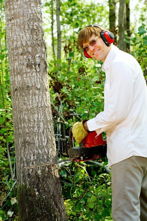 Man cutting down a tree stock photos