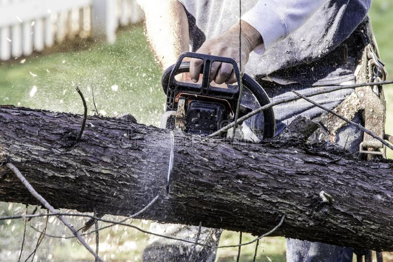 Man cutting tree with gas powered chainsaw stock photos