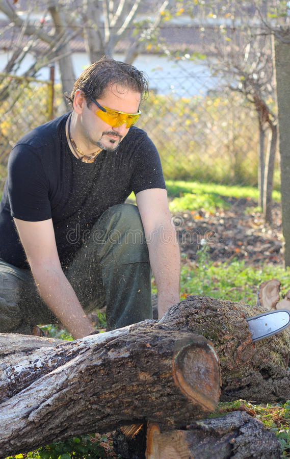 Man Cutting Tree Trunk Stock Images