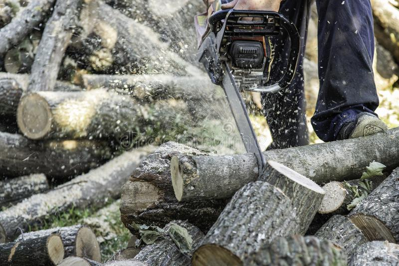 Man cutting woods with chainsaw. Outdoor royalty free stock photography