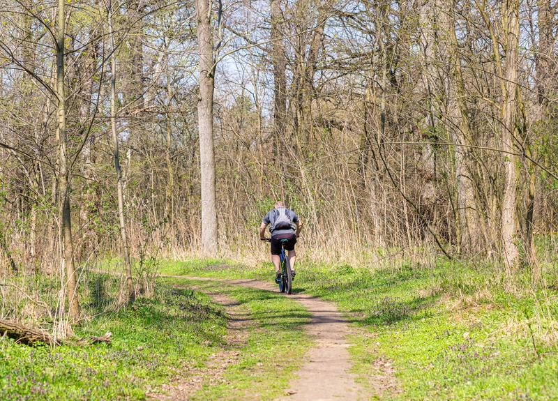 Man cyclist riding the bike on the trail in spring sunny forest. Healthy lifestyle and travel concept. Space for text. Man cyclist riding the bike on the trail royalty free stock images