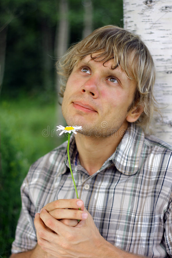 Download Man with daisy daydreaming stock photo. Image of pensive - 3318398