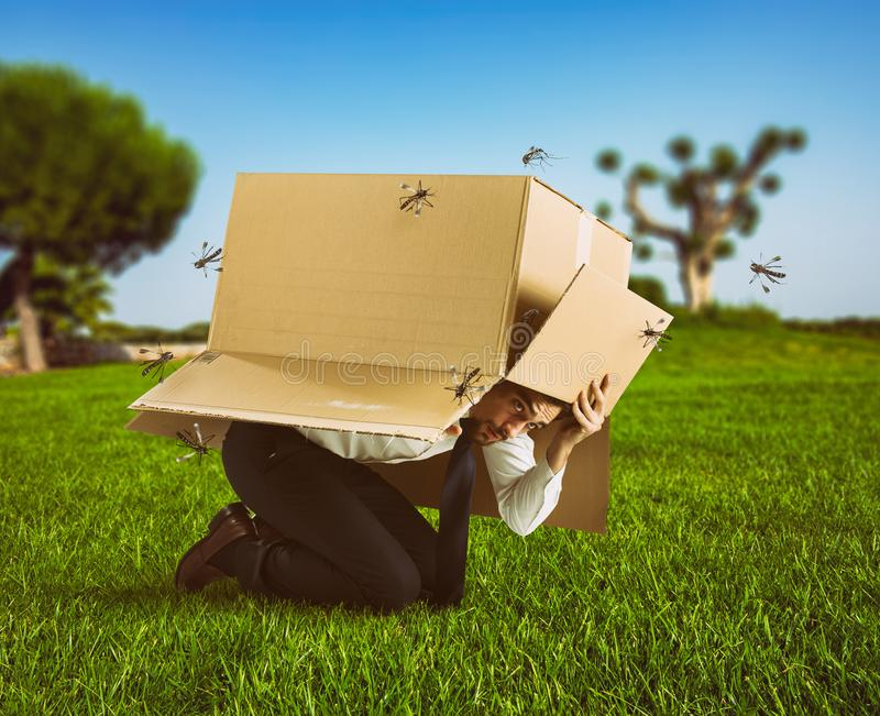 Man defends himself from the attack of mosquitoes hiding in a cardboard box. Defend yourself from mosquito bites with a protection royalty free stock photos
