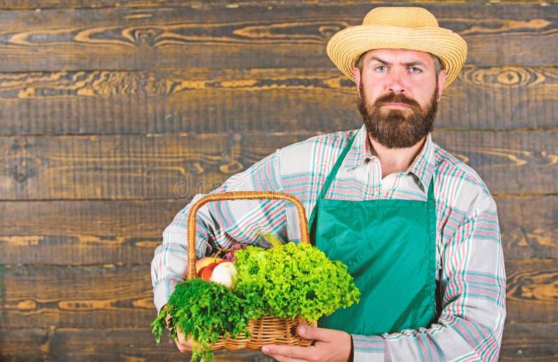 Man den skäggiga bonden som framlägger ecogrönsakträbakgrund Bondesugrörhatten levererar nya grönsaker Lantgårdleverans arkivbild