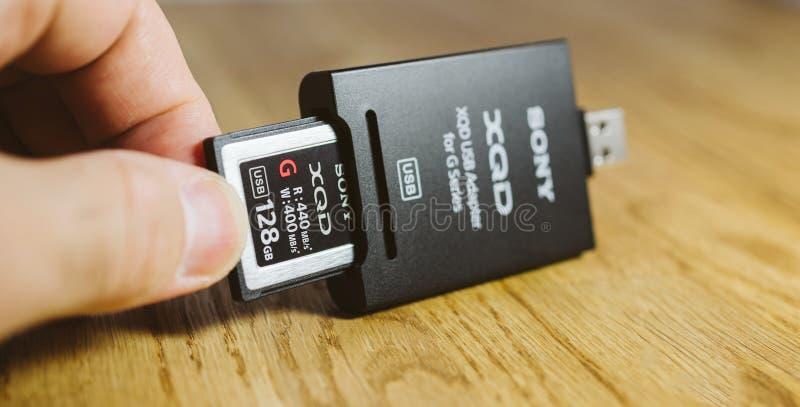Man det hållande nya XQD-minneskortet vid den Sony kortläsaren arkivfoton