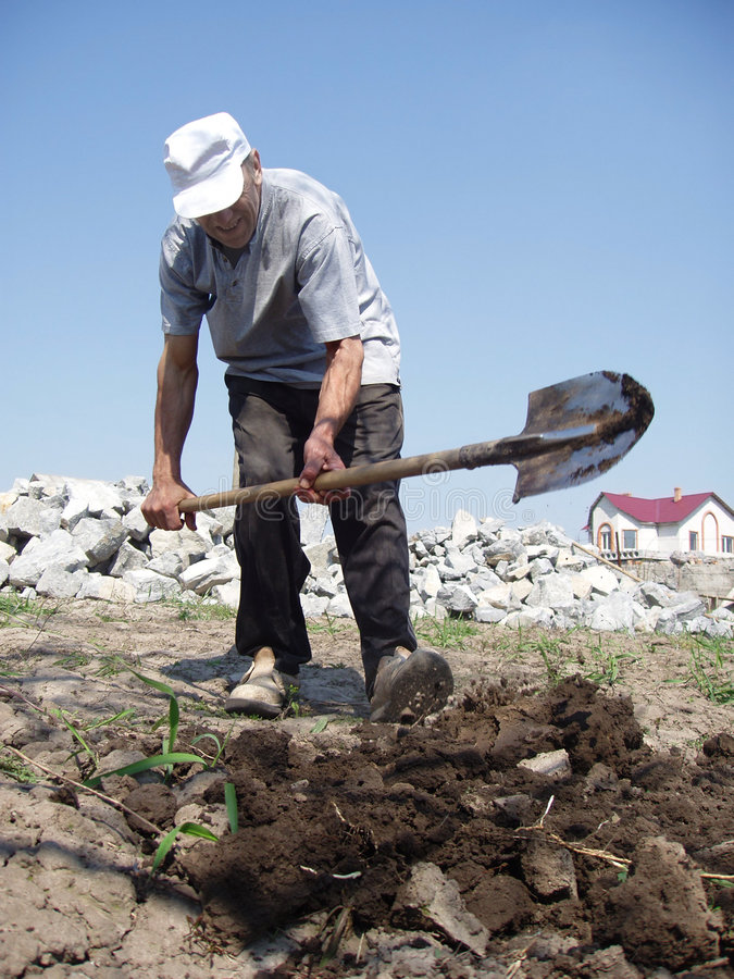 man digging stock image image of shovel ground