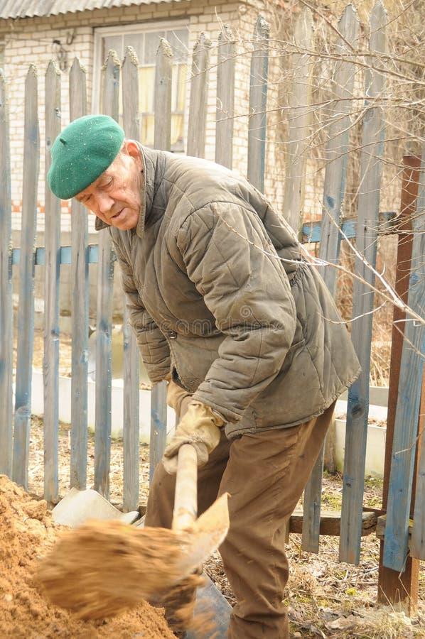 Man digging ground royalty free stock photo