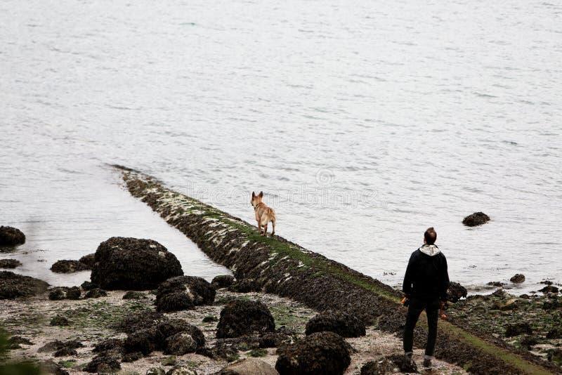 Man & Dog At The Beach royalty free stock image