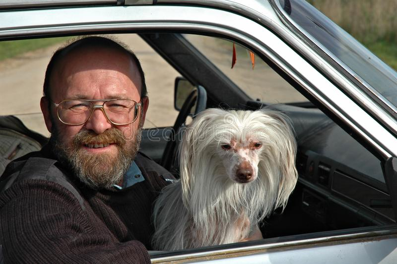 Man with dog in car stock images