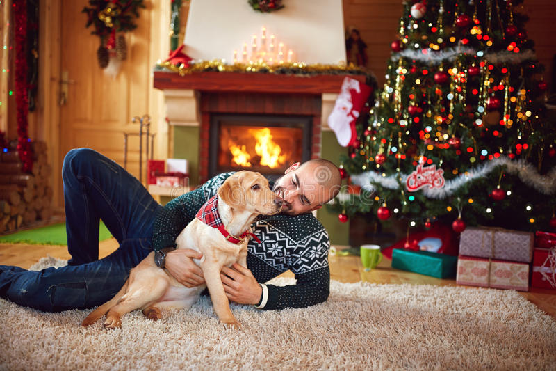 Man with dog having fun. Man with nice dog having fun on Christmas holiday royalty free stock photography