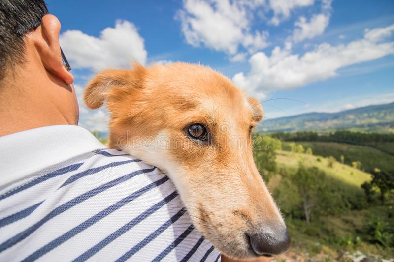 A man with  dog. mountain and blue sky and very nice clouds. A man with a dog. mountain and blue sky and very nice clouds royalty free stock photo
