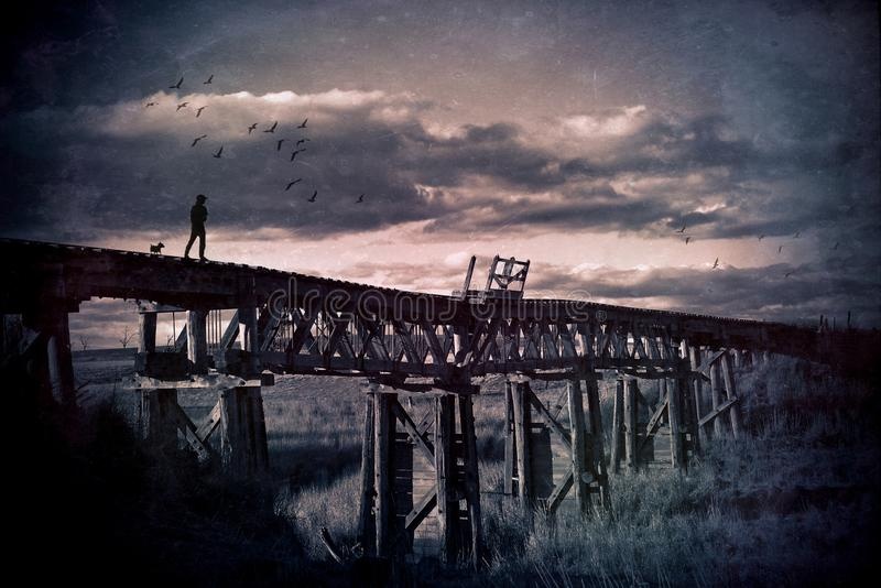 Man and dog in rural scene wander across an abandoned bridge. Lone man and his dog wander across an abandoned wooden railway bridge through the countryside stock photos