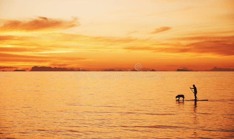 Man with dog on a sea in the sunrise. Thailand royalty free stock images
