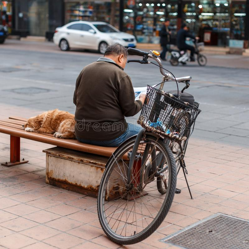Man with a dog sitting on a bench and reading a newspaper. royalty free stock images
