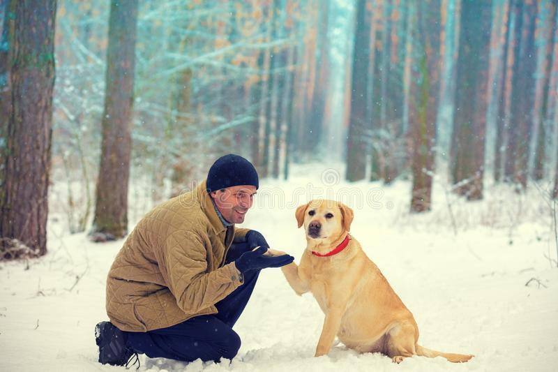 The man with the dog sitting in a snowy winter forest stock image