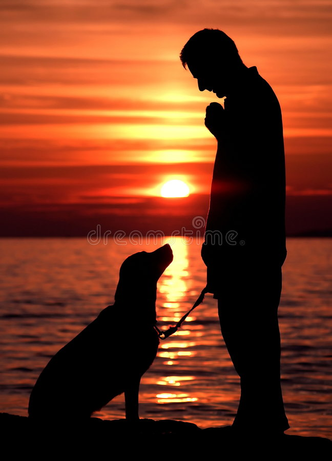 Man with dog at sunset. Silhouette of Man with dog at red sunset royalty free stock image