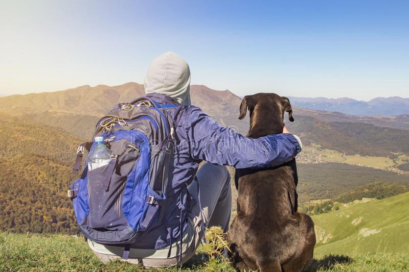 Man and dog on top of the mountain stock images