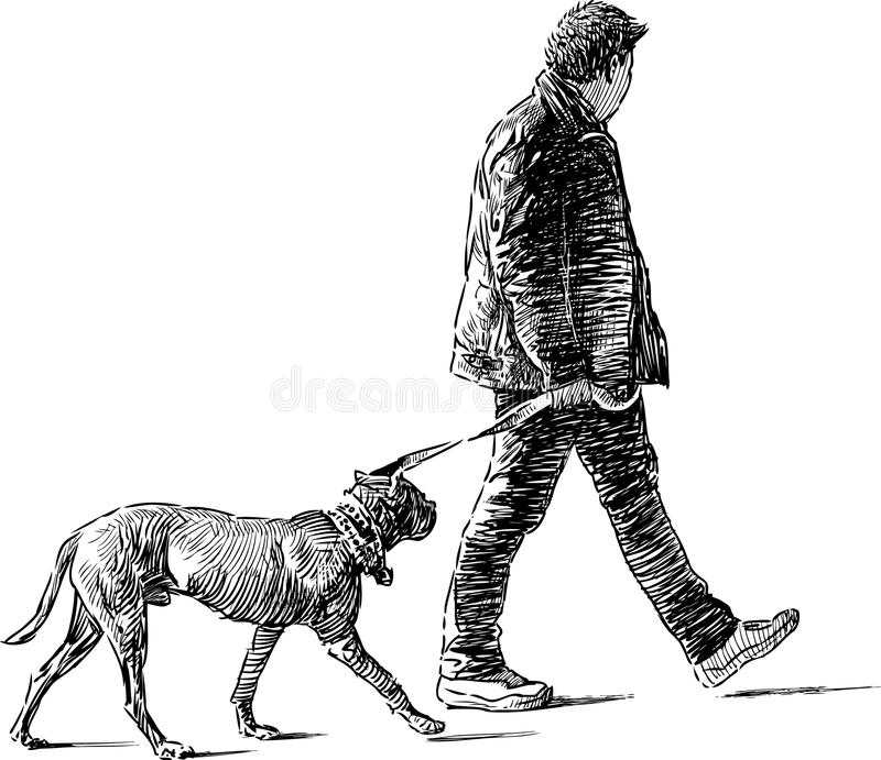 Download Man with dog stock photo. Image of drawing, drawn, walking - 30799860