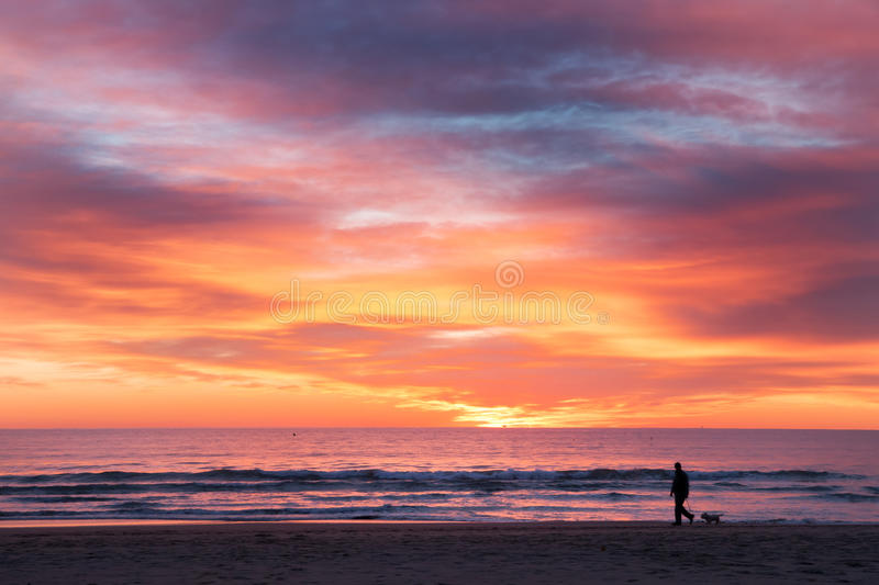 A man an a dog walking on the beach royalty free stock photo