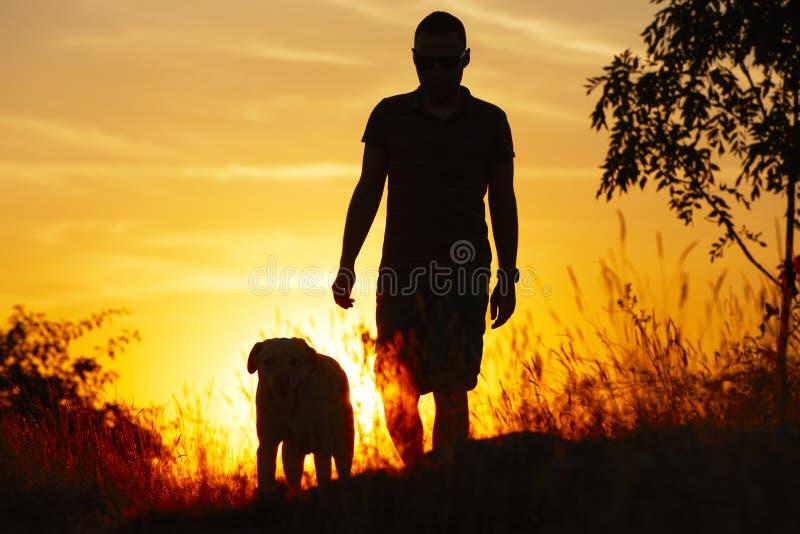 Man with dog royalty free stock photos