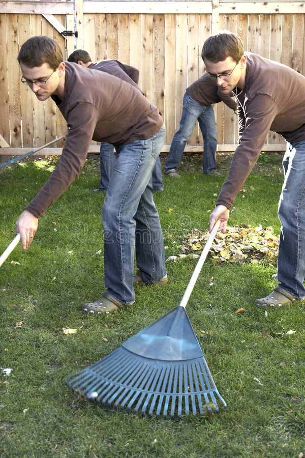 Download Man Doing Chores Royalty Free Stock Images - Image: 6928669