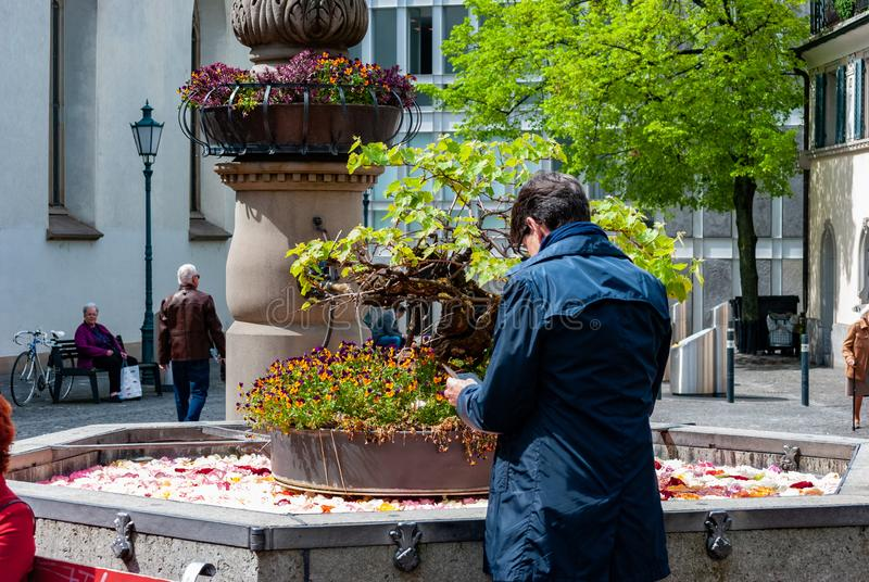 Man doing a photo of flowers stock photos
