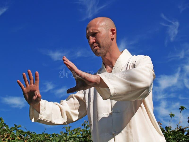 Man Doing Tai Chi 2 royalty free stock image