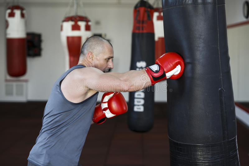 Man doing workout in the boxing hall. Strong man doing workout in the boxing hall royalty free stock photos