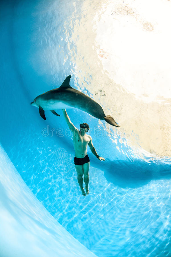 Man and dolphin. Man and a friendly dolphin playing under the water stock photo
