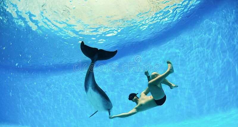 Man And Dolphin Royalty Free Stock Photography