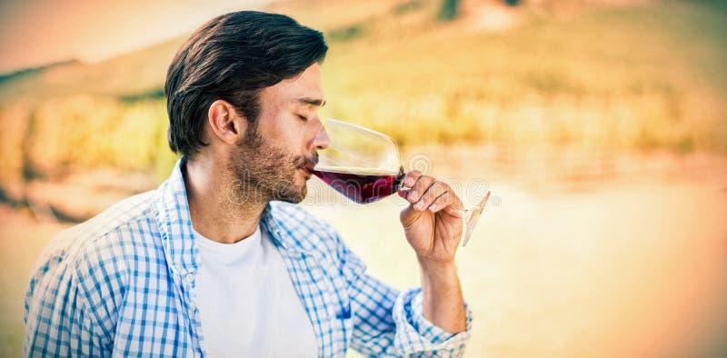 Man drinking red wine stock photos
