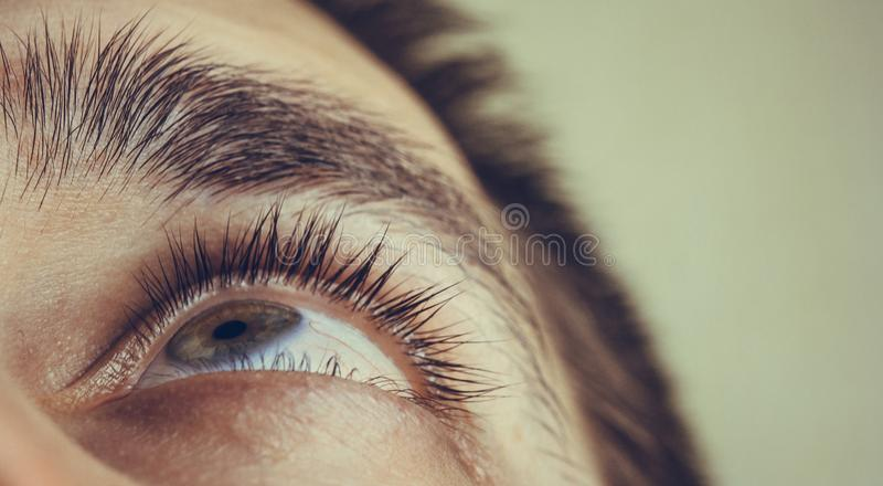 A man drips open human eye with bright red arteries drops to improve vision close up. irritation and redness of the eyeball. Pupils, iris, eyelashes in macro royalty free stock photo