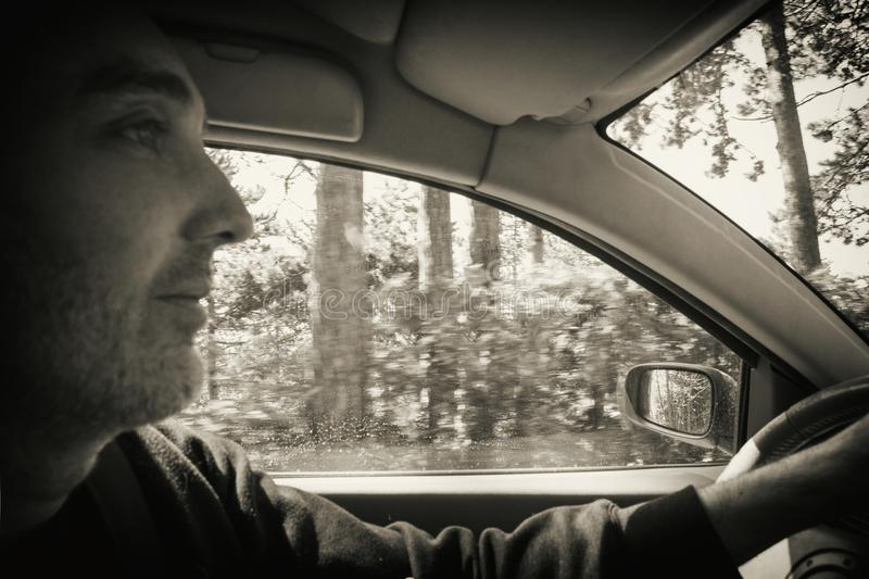Man drives the car. Man drives a car in the forest royalty free stock photo