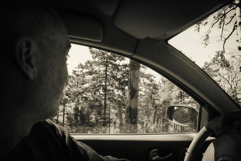 Man drives the car. Man drives a car in the forest. He turned his head royalty free stock images