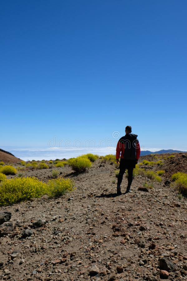 Man on dry volcanic mountain landscape surrounded by yellow flow stock images