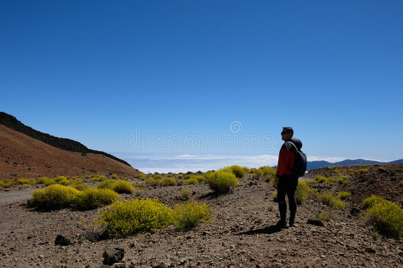 Man on dry volcanic mountain landscape surrounded by yellow flow stock photo