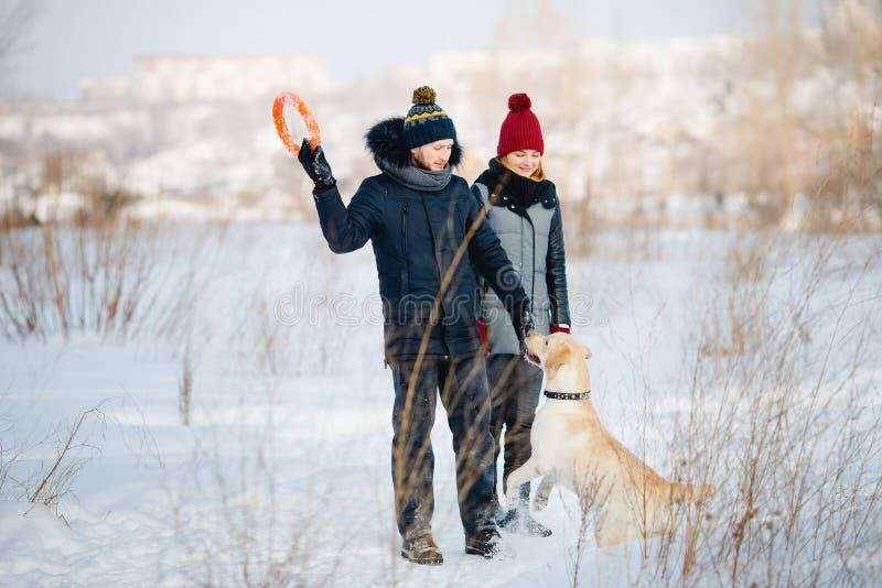 Man en jonge vrouw die stuk speelgoed voor honden Labrador in sneeuw in de winter werpen stock foto