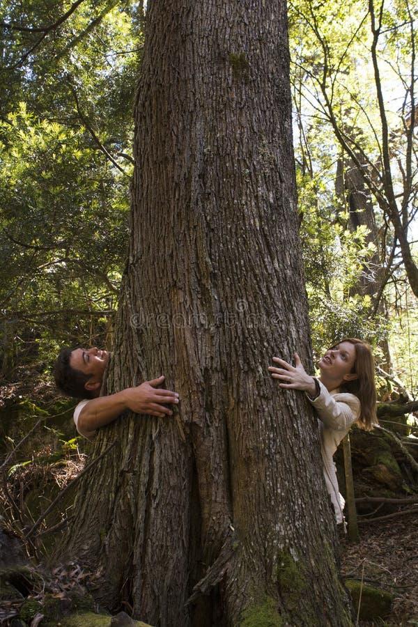 Man en vrouw die een boom koesteren stock foto's