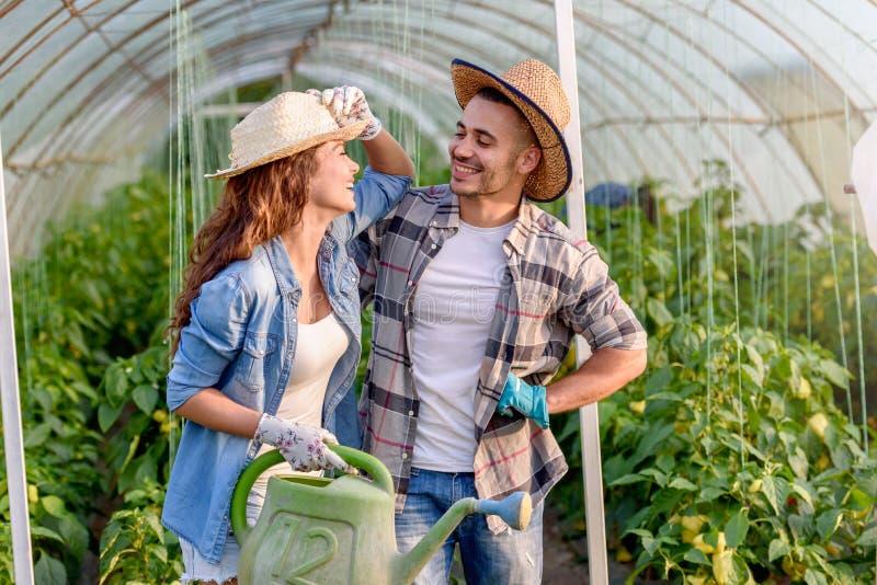 Man en vrouw die organische groenten kweken bij serre stock foto