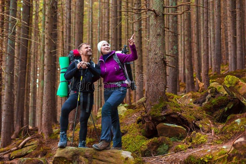 Man en Vrouwenwandelaars die in Dicht Oud Forest Smiling en het Richten blijven stock afbeelding