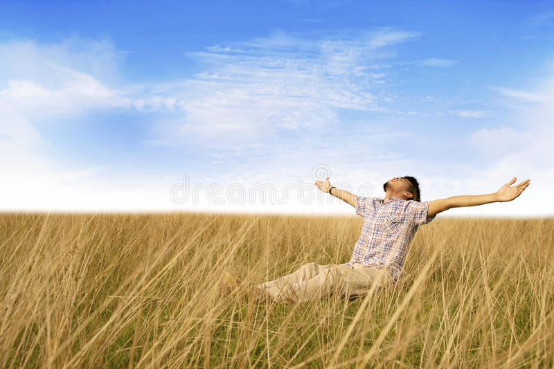 Download Man enjoying freedom stock image. Image of freedom, attractive - 24065283