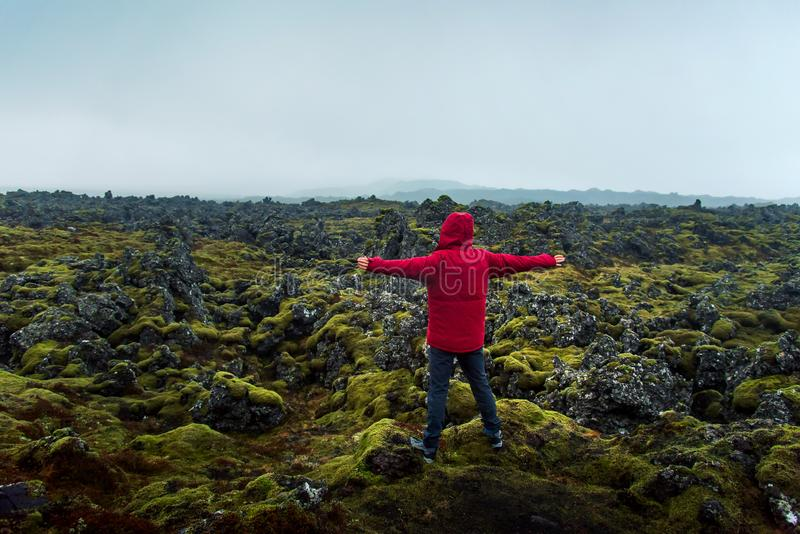 Man enjoying lava field view in Iceland royalty free stock images