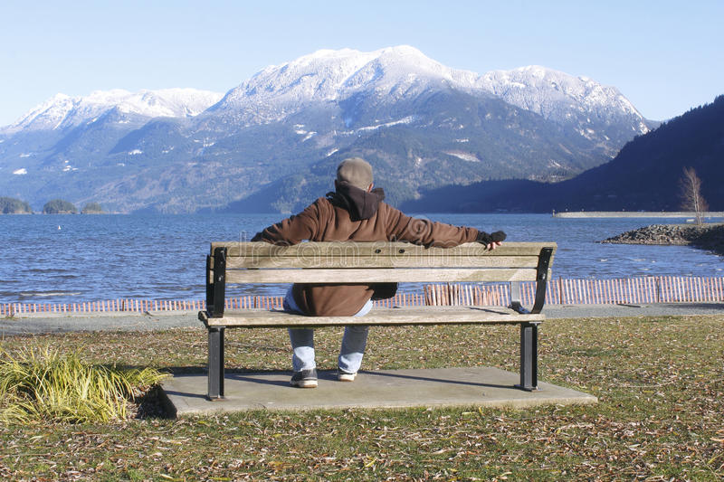 Download Man Enjoys Scenic Beauty Royalty Free Stock Photos - Image: 28638008