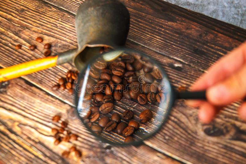 Man examines coffee beans through a magnifying glass. royalty free stock image
