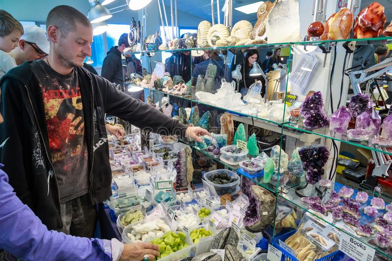 Man examining a colorful display of minerals and crystals royalty free stock photography