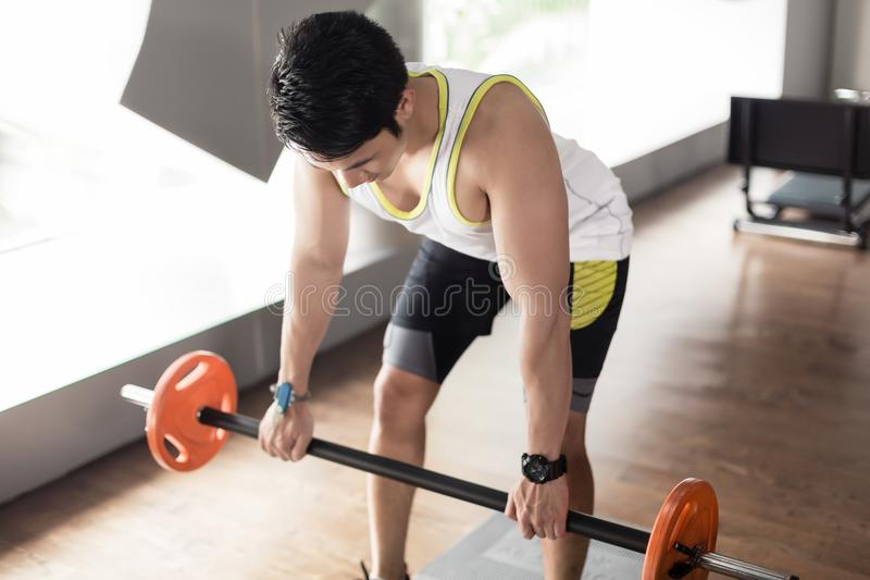 Man exercising bent over rowing with barbell for back muscles stock images