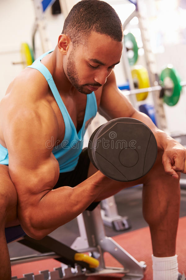 Man exercising with dumbbells at a gym, vertical shot stock photos